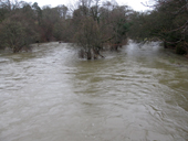 Local floods - River Derwent
